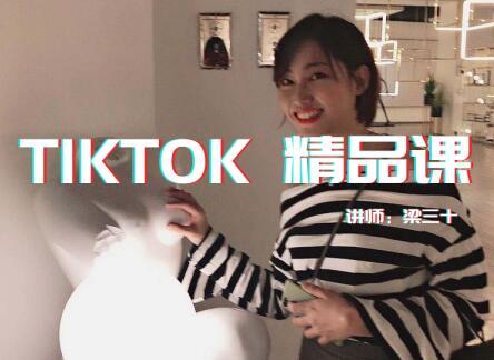Tiktok精品实操课_单账号最高210W粉丝
