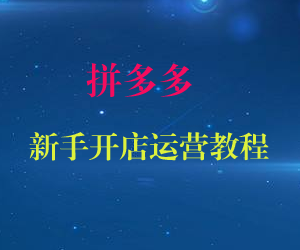 拼多多新手开店运营教程(共13课)