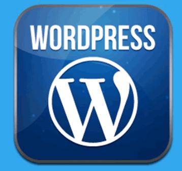 WordPress网站建设和优化