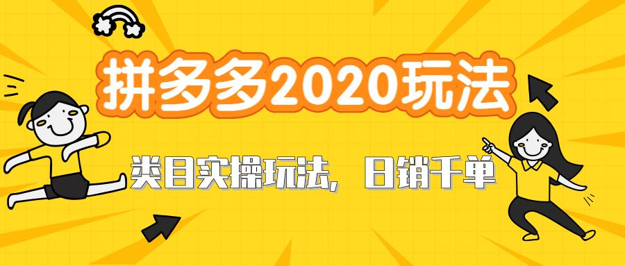 拼多多2020最新类目实操玩法,直通车定向玩法做爆款,轻松操作到日销千单
