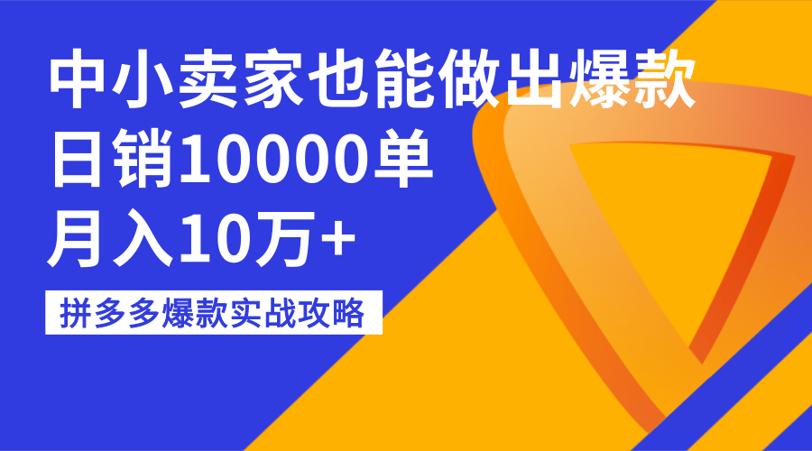 拼多多爆款实战攻略:中小卖家也能做出爆款,日销10000单,月入10万+