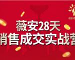 薇安28天销售成交实战营,5分钟成交3万,实现了月入近6位数的营收