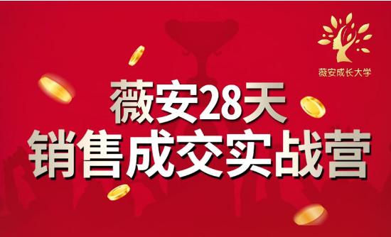 薇安28天销售成交实战营,5分钟成交3万,实现了月入近6位数的营收 国外网赚 第1张