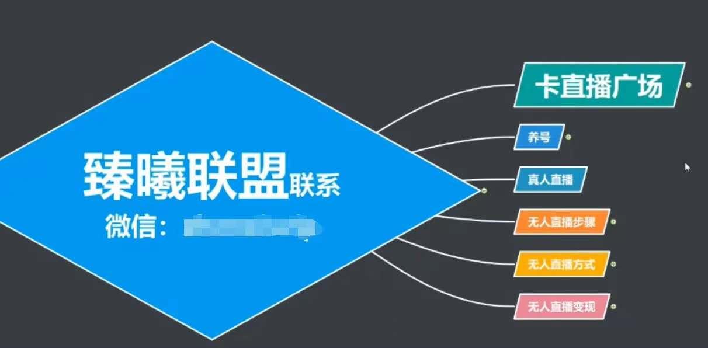 臻曦联盟,最新无人直播万人在线技术理原及详细操作步骤解析(视频教程) VIP项目 第1张