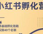 勇哥小红书撸金快速起量项目:教你如何快速起号获得曝光,做到月躺赚在 3000+